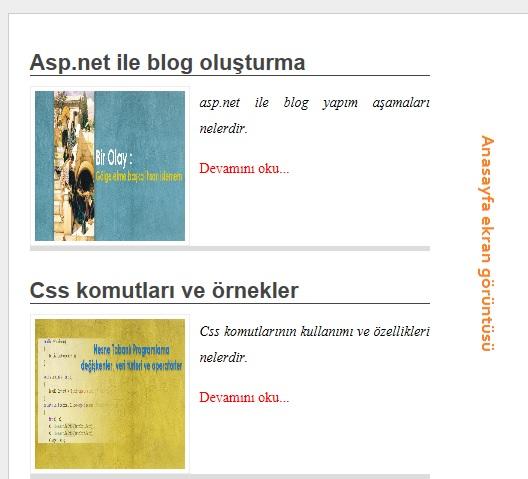 asp.net blog yapımı anasayfası