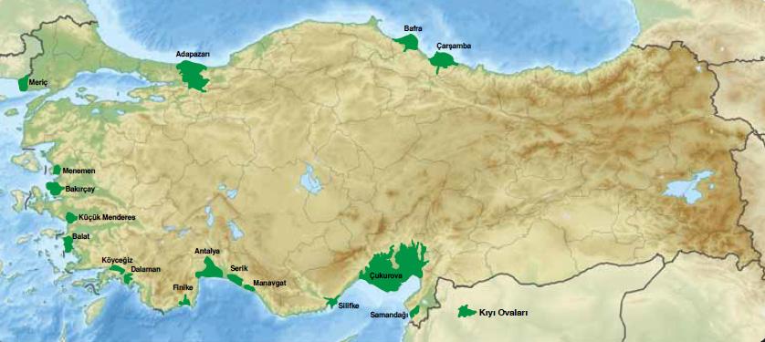 Türkiyenin kıyı ovaları